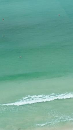 Wyndham Vacation Resorts Panama City Beach: Manta rays from our balcony