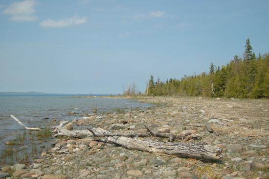 Owen Sound, Canadá: Hibou conservation area - The Point Trail