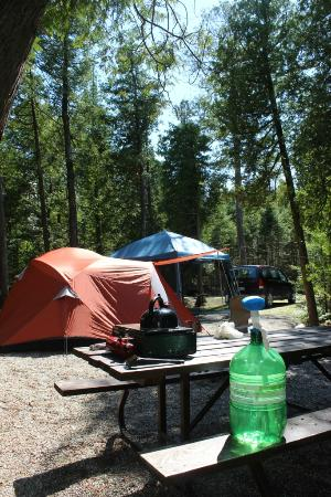 Inverhuron Provincial Park: Plenty of room on most camp sites for a large sleeping tent and shelter. and