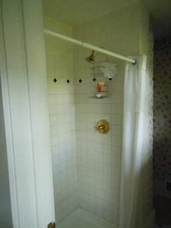 1910 Historic Enterprise House Bed & Breakfast: Tall Shower