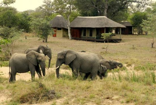 ABC Africa Tours & Safaris