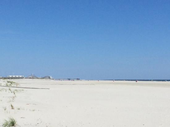Bal Harbour Hotels: Beach View