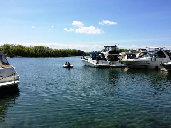 Gananoque, Canadá: dock for the boats