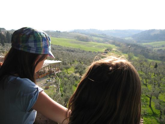 Montespertoli, Italia: View from the treehouse