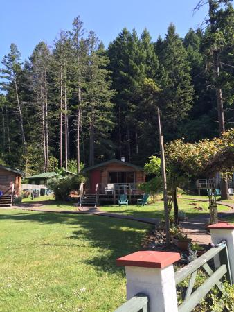 Madrona Lodge
