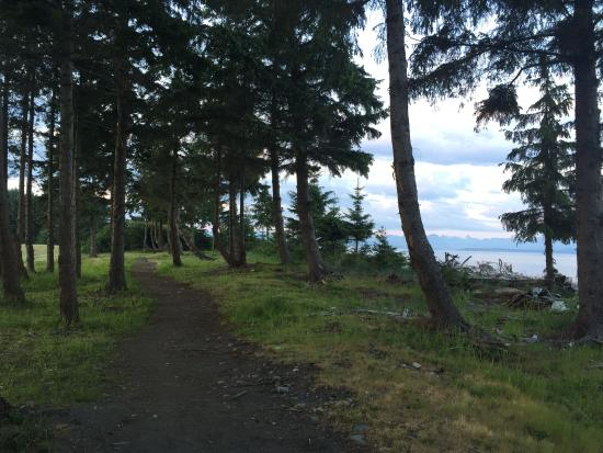 Pacific Playgrounds International RV Park, Cottages, Marina: Area trail