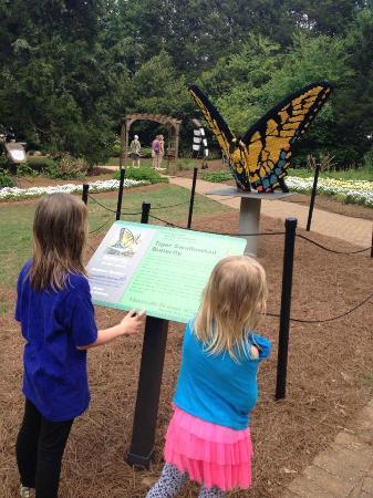 Huntsville, AL: Lego butterfly