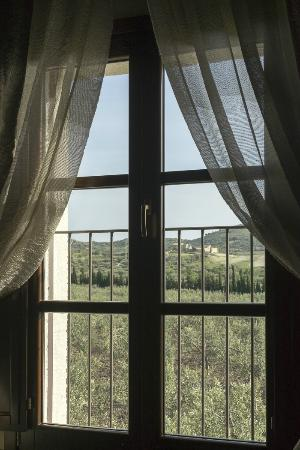 Mandranova : View of olive grove from our room