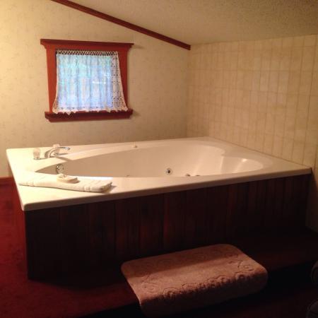 Bavarian Inn Lodge & Restaurant: photo0.jpg