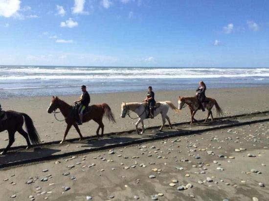 Crescent Trail Rides