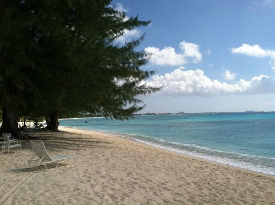 Silver Sands: quiet, shaded beach
