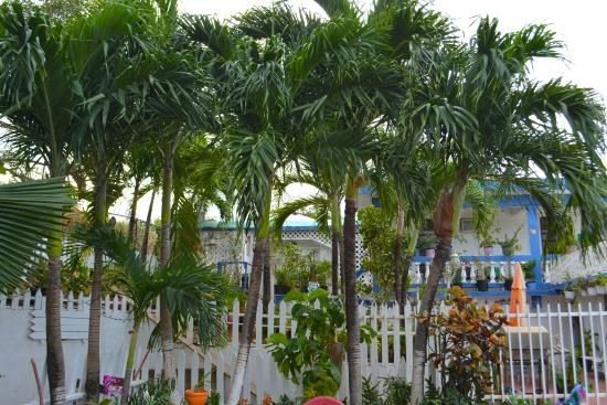 Culebra International Hostel: Front Entrance of Hostel & Sitting Area