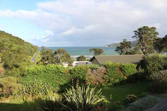 Manuka Lodge: The view straight out from the room