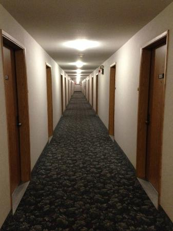 Surestay Plus Hotel By Best Western Moses Lake : Endless hallway