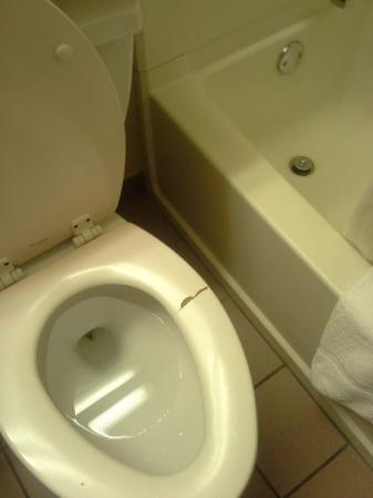 Microtel Inn & Suites by Wyndham Clarksville : Toilet!