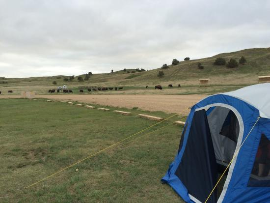 Sage Creek Campground 사진