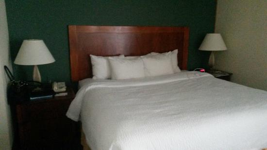Sonesta ES Suites Minneapolis - St. Paul Airport: king-size bed