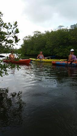 Riverfront Kayaks Paradise Tours