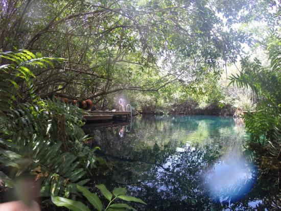 Hacienda Tres Rios: Cenote Beautiful