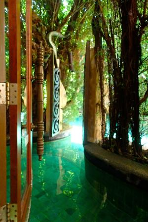 The Baray Villa: The room's exit via pool