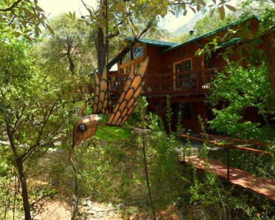 Chuparosa Bed Breakfast Madera Canyon