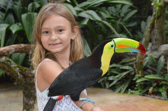 The Springs Resort and Spa: Our daughter Chloe holding a toucan!