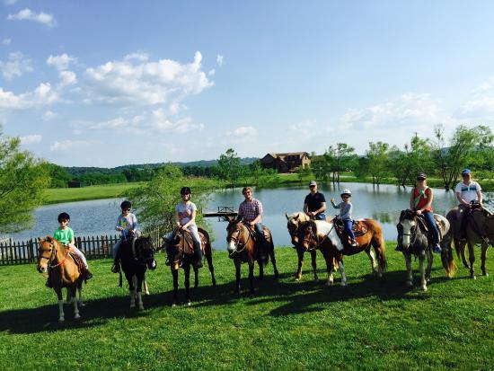 Shelbyville, TN: Clearview Horse Farm Horseback Riding