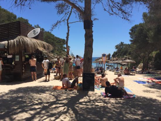 Cap Falco Mallorca Hotel