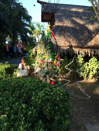 The Sunset Village Beach Resort: New Year tree