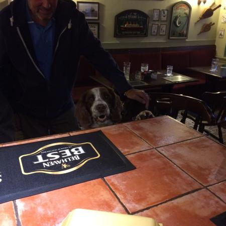 Clashwhannon Public house: Another happy customer
