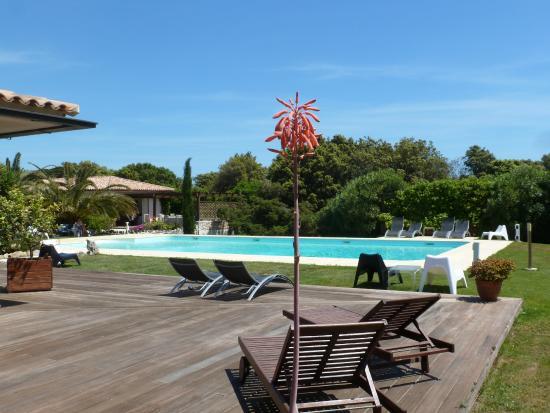 Poisson Rouge : espace piscine