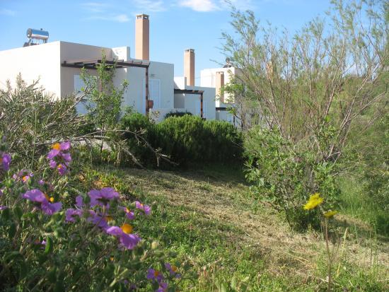 Footscapes of Crete : De luxe studio's boven op de berg bij Kastellos
