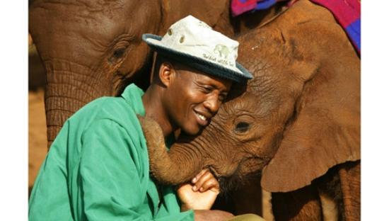 David Sheldrick Wildlife Trust : We both love each other.