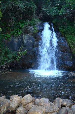 Mary Shire Falls: Tranquile cascade