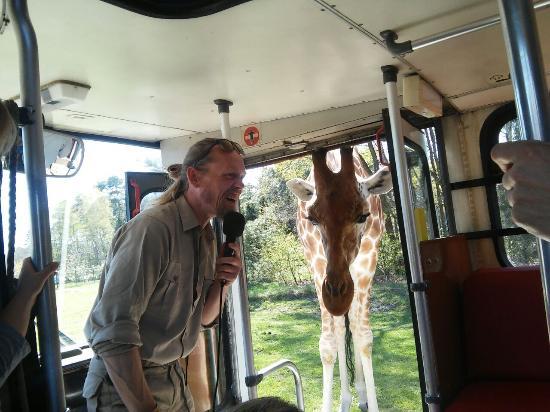 Safari-Lodges Photo