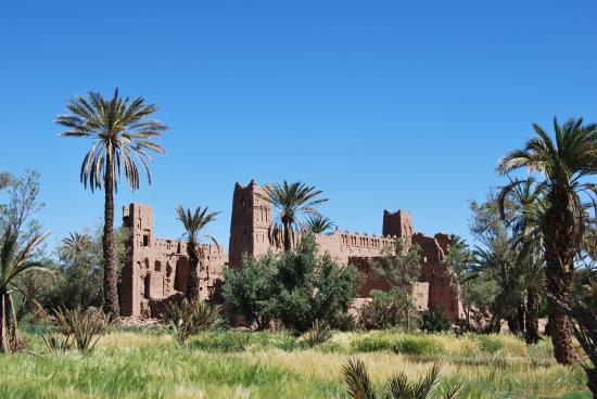 Sahara Aventures Travel: kasbar