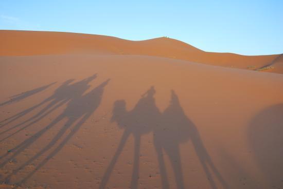 Sahara Aventures Travel: our shades in desert