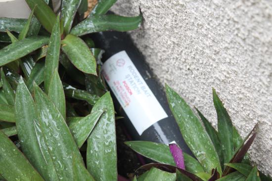 Grants Villa: Rat poison beside the front door