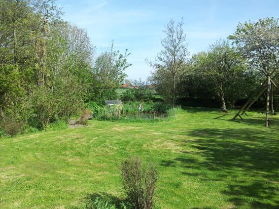 Strooppot: De tuin