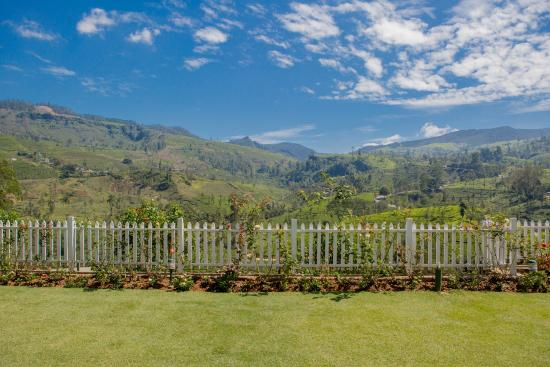 Langdale by Amaya: View