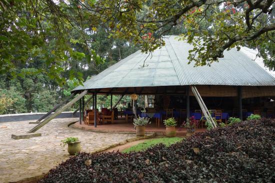 Bushara Island Camp: Reception + restaurant