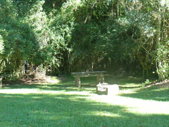 Dalene Matthee Memorial: Picnic area