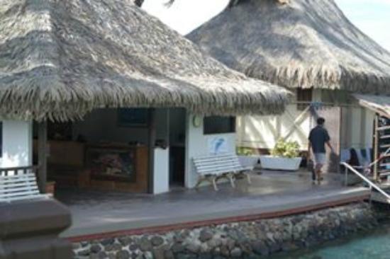 Moorea, Fransız Polinezyası: La réception