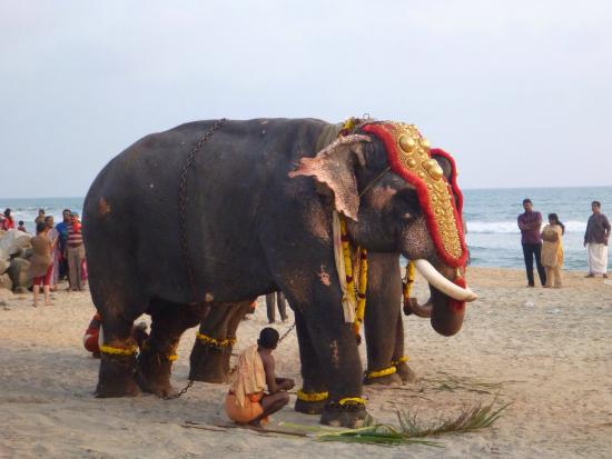 Papasnanam Beach: Festival time is a great time to visit.