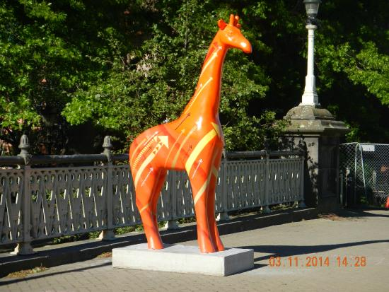 West Fitzroy Apartments : Giraffe for sale....