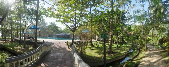 Siddhalepa Ayurveda Health Resort: Pool