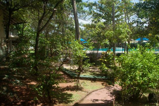 Siddhalepa Ayurveda Health Resort: Gelände