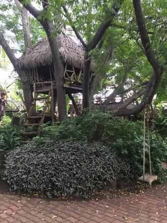 Hotel Manavai : Casinha de madeira sobre a árvore para crianças