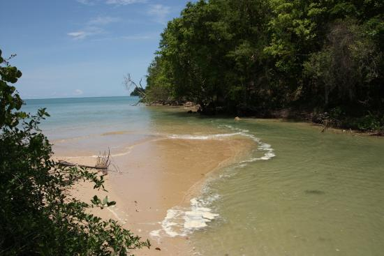 Dirty water: not suitable for swimming - Picture of Pasai Beach, Ko