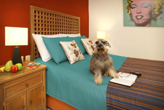 Hotel Santa Maria: Pet Friendly